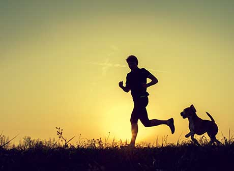 ejercicio con perro